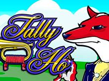 Tally Ho азартная игра с возможностью вывода денег