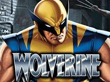 Онлайн автомат Wolverine: шансы выиграть наличествуют